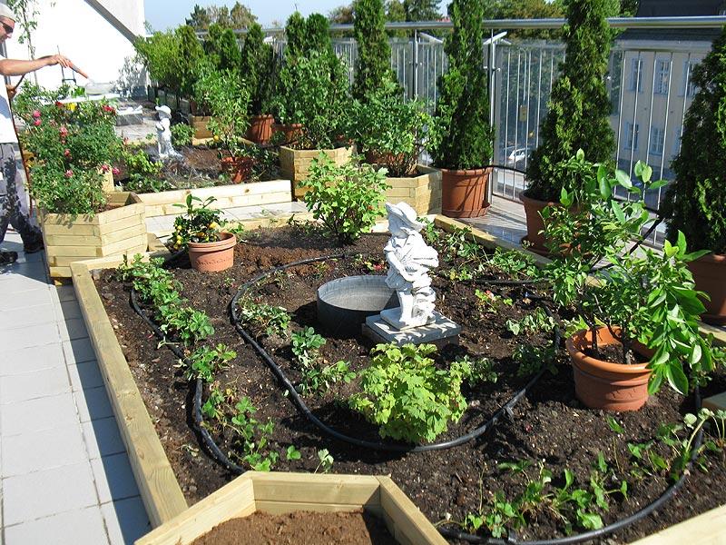 Leistungen gartengestaltung landschaftsgestaltung for Gartengestaltung 1220